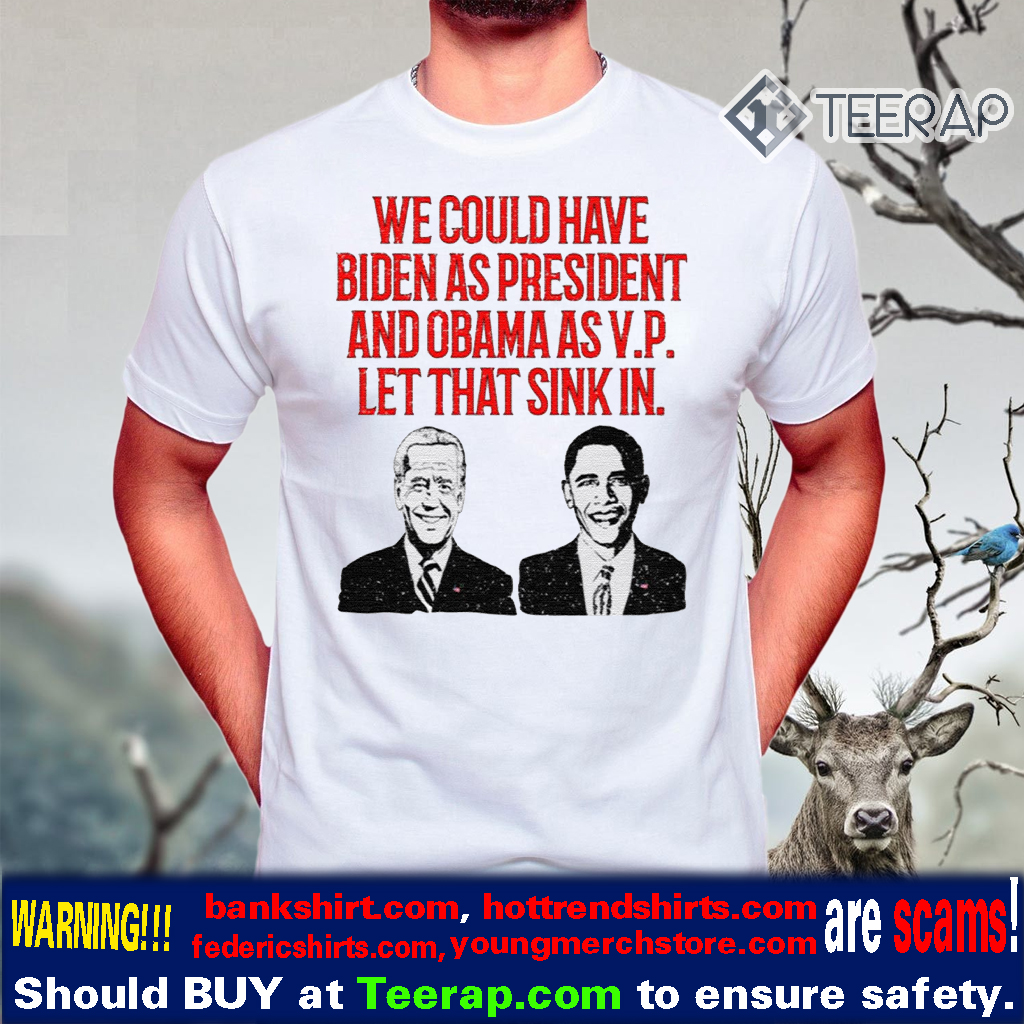 We could have Biden as President and Obama as VP Let that sink in T-Shirts
